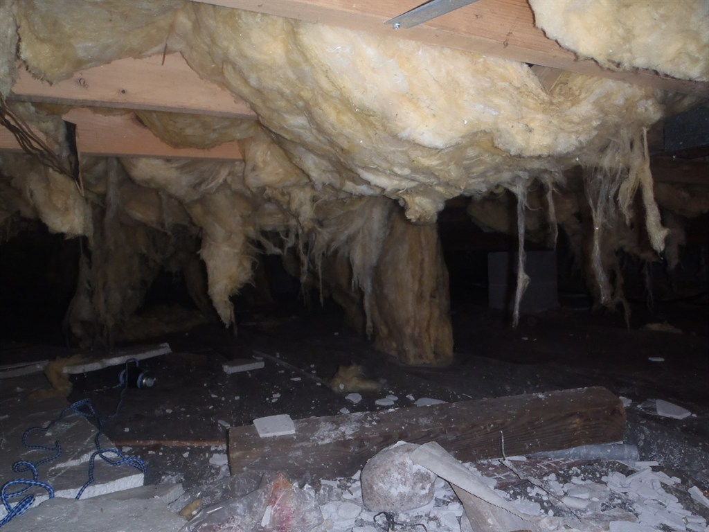 Crawl Space Before - Troy, MI