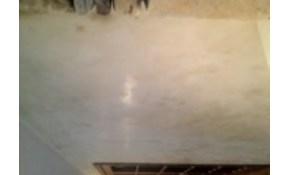 $99 Exclusive Italian Venetian Plaster Application!