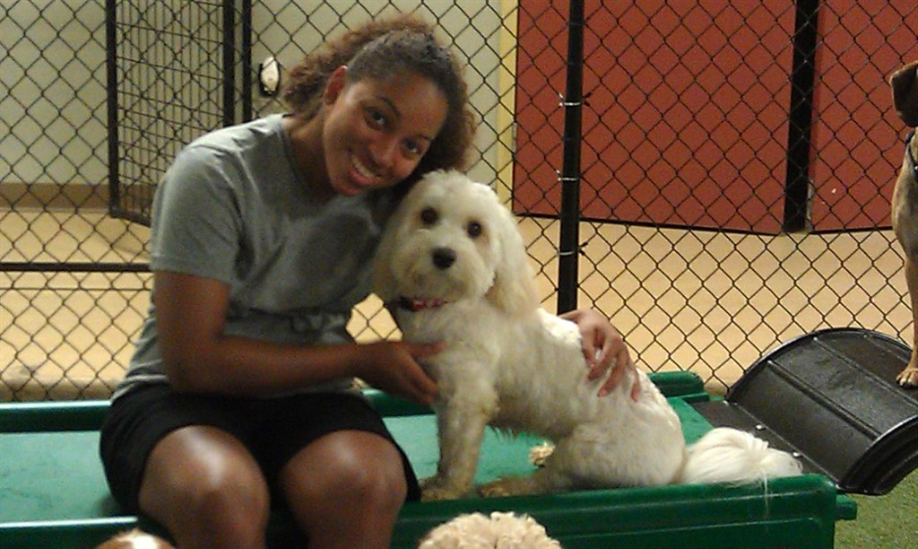 Dog Day Care Pikesville Md
