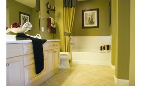 $235 for Painting Service of 1 Full Bath...