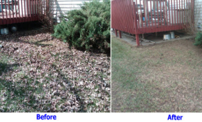 Before and After of Fall Cleanup