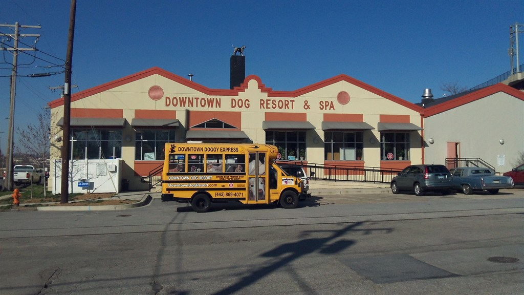 Downtown Dog Resort And Spa Reviews