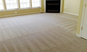$129 for 4 Areas of Carpet Cleaning (Cleaned...