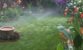 $90 for Full Irrigation System Check-Up