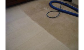 $179.95 for Whole House Carpet Cleaning Up...