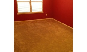 Only $100 for 5 Rooms of Carpet Cleaning!...
