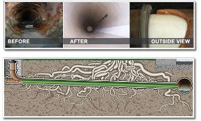 $4,950 for 75 Linear Feet of Trenchless Sewer...