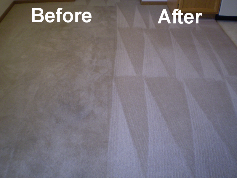 Moodys Carpet Care