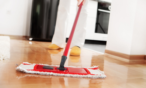 $100 for up to Four Hours of Housecleaning
