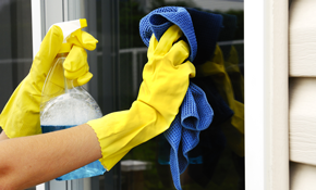$135 for Up to 20 Windows Cleaned and Free...