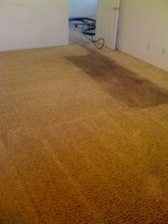 Zerorez Carpet And Surfaces Cleaning Boise Boise Id