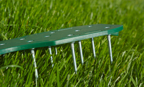 $129 for Lawn Aeration and Fertilization...