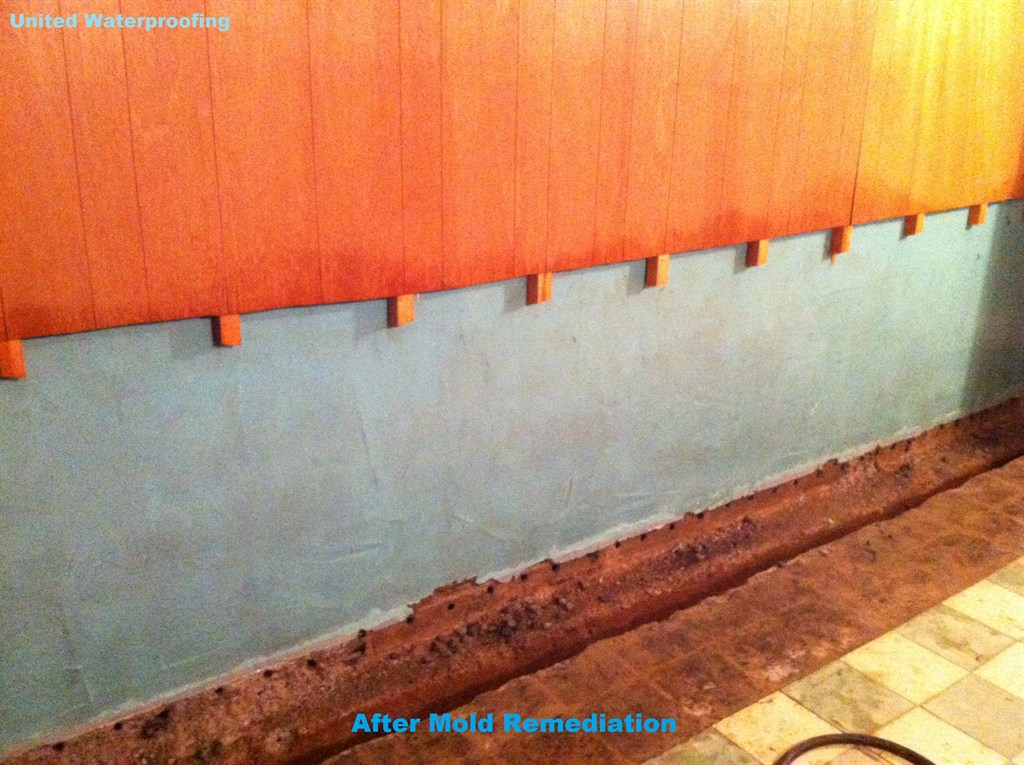 Wall After Mold Remediation