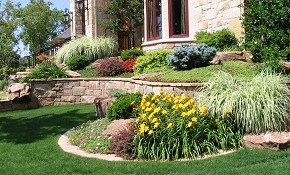 $62 for Complete Landscape Design and Consultation!