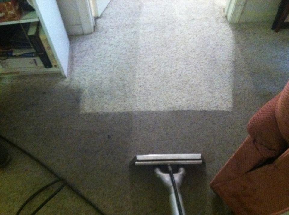 Stanley Steemer Carpet Cleaner Geelong – Floor Matttroy