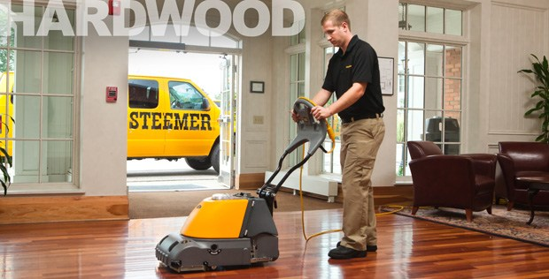 Stanley Steemer Carpet Amp Air Duct Cleaning Traverse City