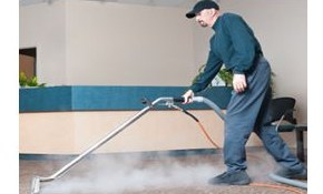 $160 for 2 rooms of Organic Carpet Cleaning!