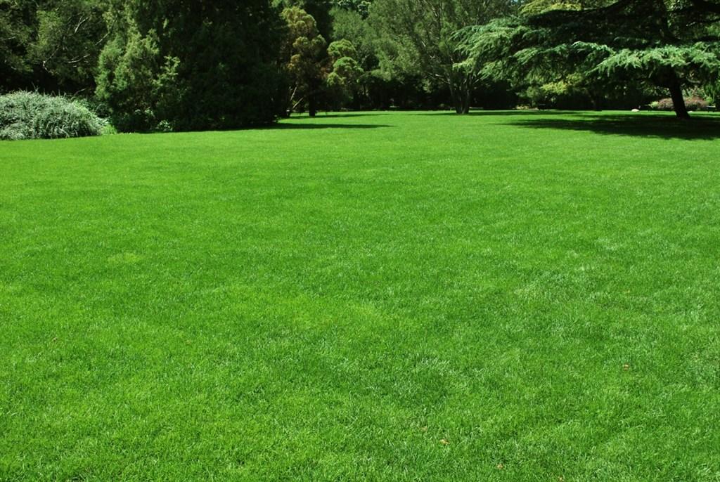 Natural Green Lawn Care Llc