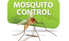 $79 for SafeLawn™ Mosquito Control!
