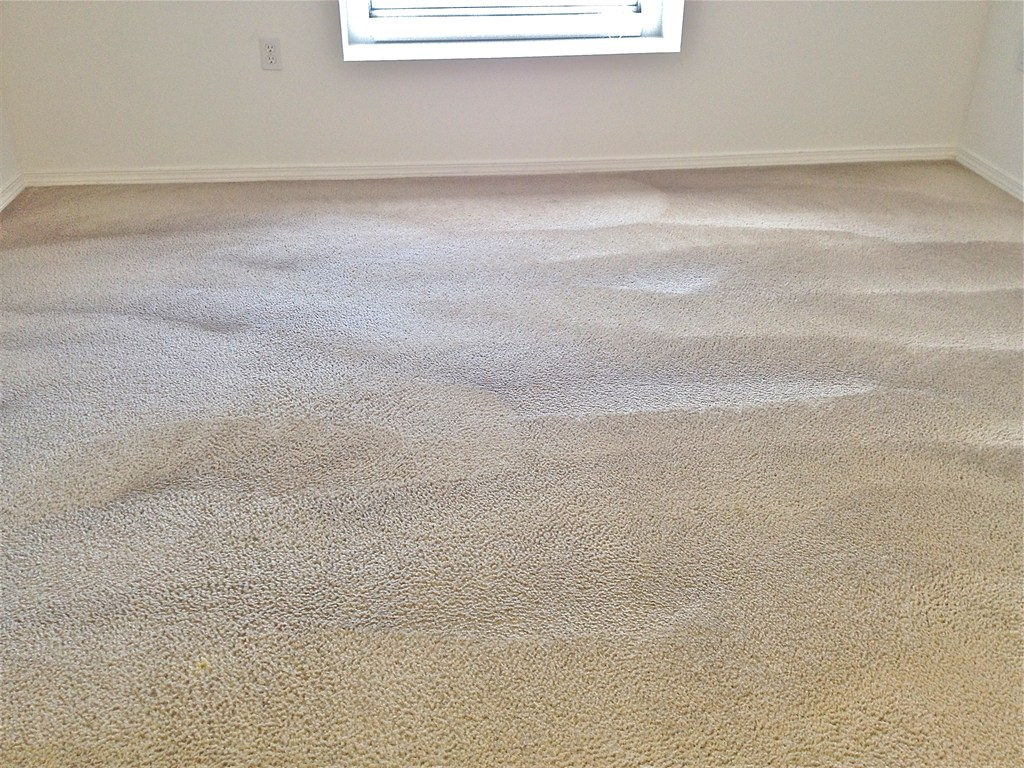 How Much Should  Rooms Cost To Carpet Clean