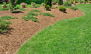 $649 for Mulch and Weed Control Package