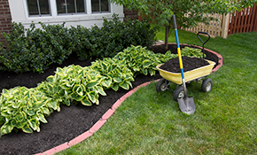 $149 for Two Yards of Premium Mulch Delivered...