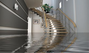 $55 for Basement Waterproofing Inspection...