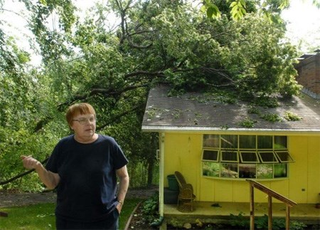 24 Hour Emergency Tree Removal