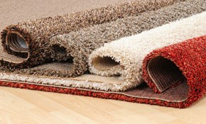 $1,350 for 750 Square Feet of Carpet Including...