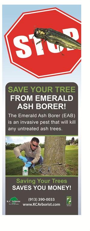 Kc Arborist Tree Care Olathe Ks 66061 Angies List