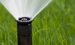 $150 Comprehensive Sprinkler Tune-Up