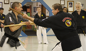 30% Off 1 Year Kobudo Program - Okinawan...