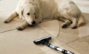 $99 for $139 for Professional Carpet Cleaning...