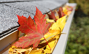 $89 for Rain Gutter Cleaning and Roof Service