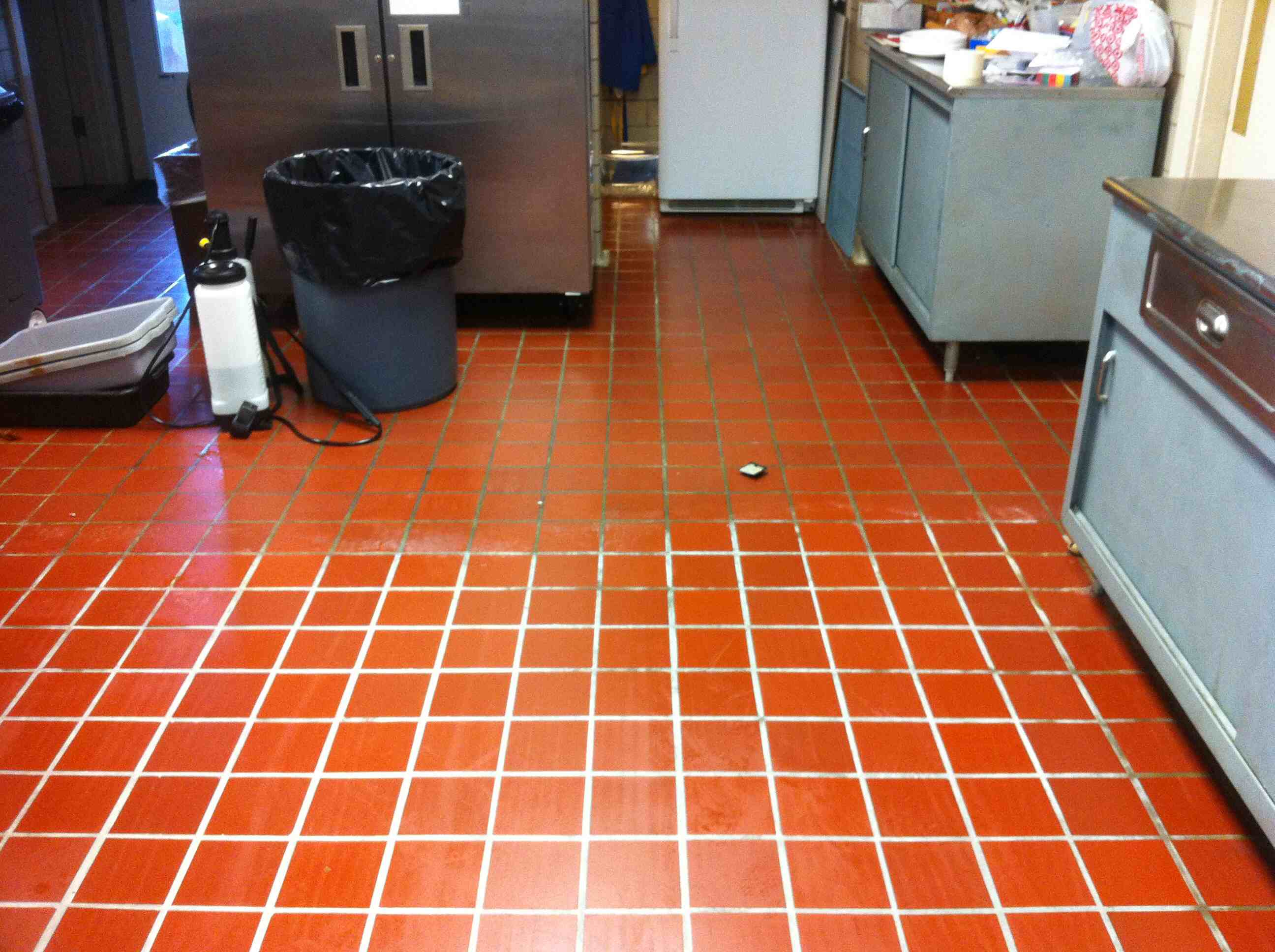Look at the contrast between cleaned and uncleaned tile!