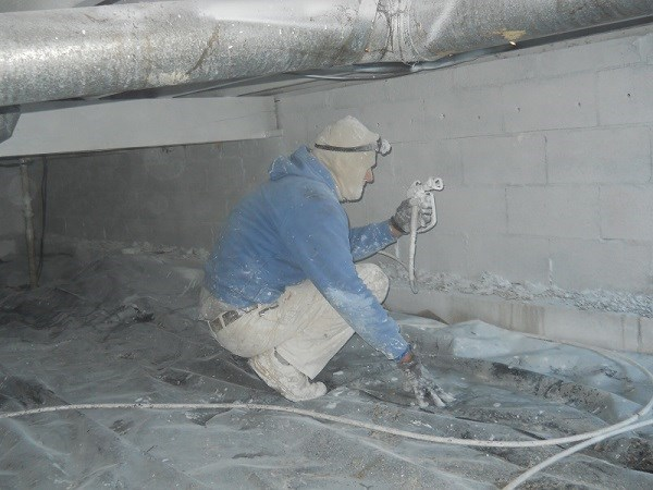 Action Mold Removal Florence Ky 41042 Angies List