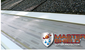 $199 towards $600 Worth of Clog Free Gutter...