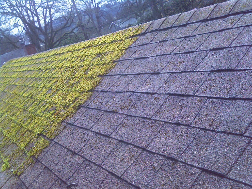 Virtue Roof Moss Removal Portland Or 97230 Angies List