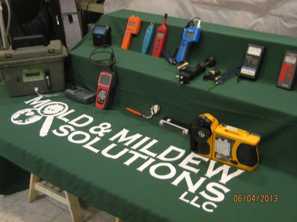 Mold inspection tools