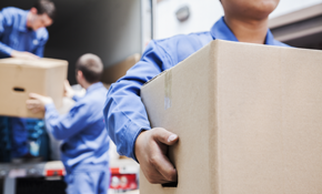 $279 for Two Professional Movers and a Fully...