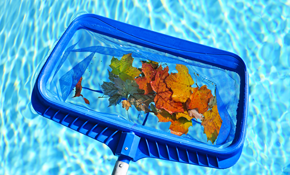 $180 for 8 Pool Cleaning Services