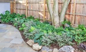 $315 to Design a Shade Garden with Year Round...