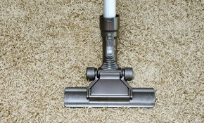 $135 Carpet Cleaning, Deodorizing, and Protection...