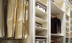 $49 for a Professional Closet Design Consultation