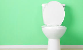 $90 for 1 Toilet Drain Cleaning