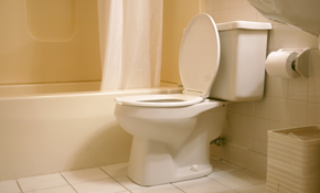$312 for Installation of a New American Standard Colony Elongated Front Toilet