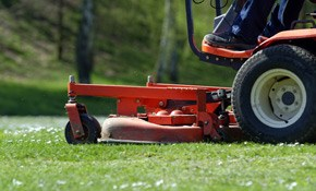 $175 for Lawn Aeration and Overseed