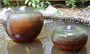 $125 Water Feature Design Consultation