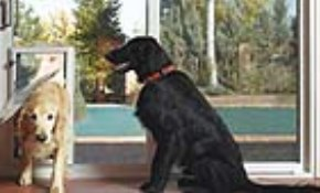$225 for Installation of In-Glass Pet Door