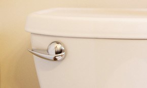 $34.95 Toilet Tune-Up and Home Plumbing Inspection